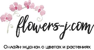 Flowers-j.com
